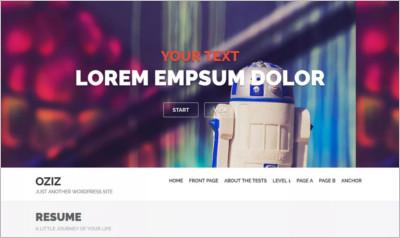 Oziz WordPress Theme - Free Download