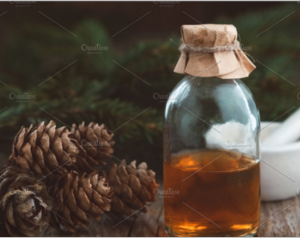 Pine oil, fir cones and branches
