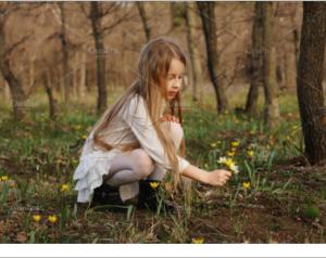 Spring walk in forest