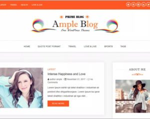 Ample Blog WordPress Theme