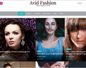 Avid Fashion WordPress Theme