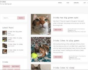 Iriska WordPress Theme