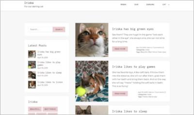 Iriska WordPress Theme - Free Download