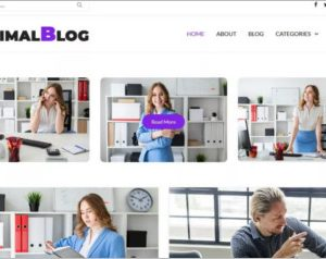 Minimalblog WordPress Theme