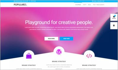 Popularis WordPress Theme - Free Download