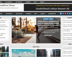 Rapid WordPress Theme