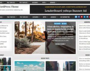 Rapid WordPress Theme