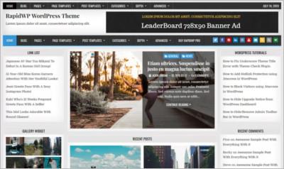 Rapid WordPress Theme - Free Download
