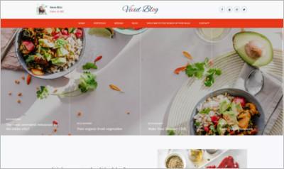 Vivid Blog WordPress Theme - Free Download