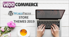15 Best WordPress Store Themes 2019