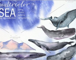 Watercolor Sea Whales set