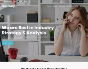 Busiway WordPress Theme
