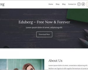 Eduberg WordPress Theme