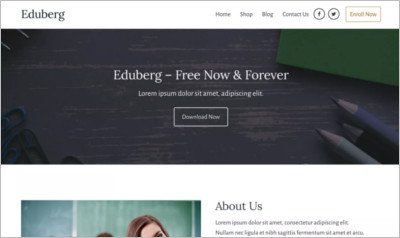 Eduberg WordPress Theme - Free Download