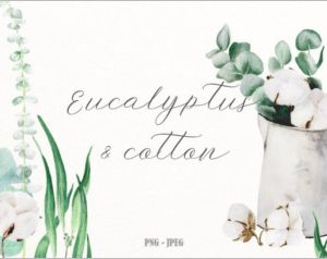 Eucalyptus cotton watercolor set