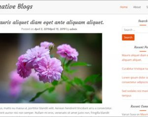 Informative Blogs WordPress Theme