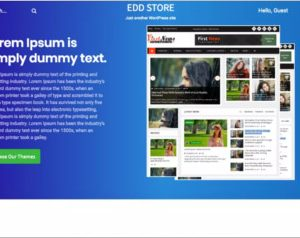 Relic EDD Store WordPress Theme