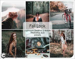 Fall Look Lightroom Presets