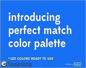 Perfect Match Color Palette