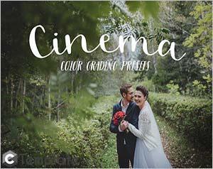 Premiere Pro wedding presets