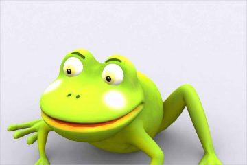 Toonpets animals 3D Frog