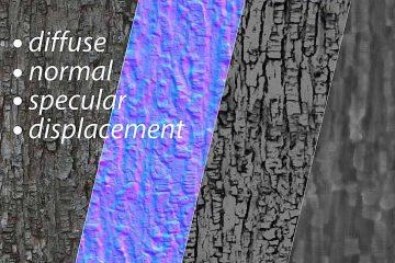 Tree bark texture set 1