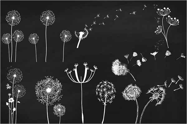 Chalk Dandelions Overlays Clip Art - Free Download