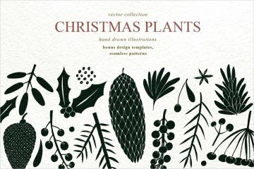 Christmas Plants Vector Collection