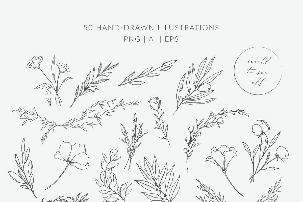 Botanical Illustration Logos