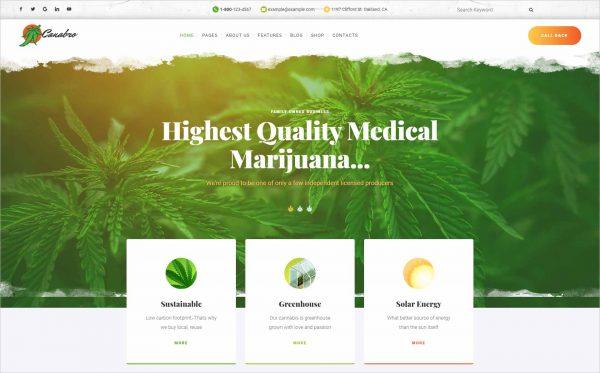Canabro Medical Marijuana Joomla Template