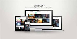 DTZ Blog A BlogMagazine Theme