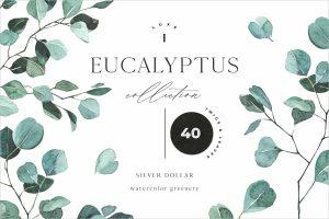 EUCALYPTUS watercolor greenery art