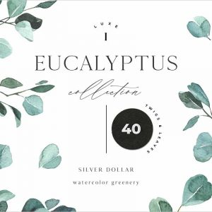 EUCALYPTUS watercolor greenery art