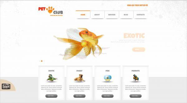 Pet Club Animals Joomla Theme