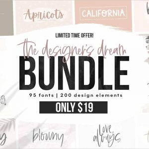 The Designer's Font BUNDLE