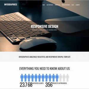 Infographics Drupal business