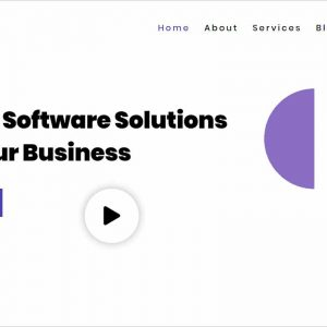 Software Full Version WordPress Theme