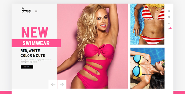 Lingerie Shop Website Template - Bowitus