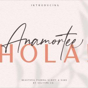 Anamortee Modern Calligraphy Font