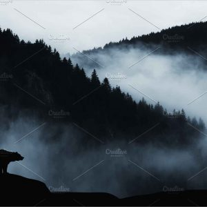 Dark landscape with bear